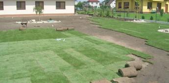 Založení trávníku postup